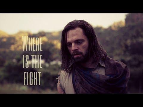 Bucky TWS II Where is the fight