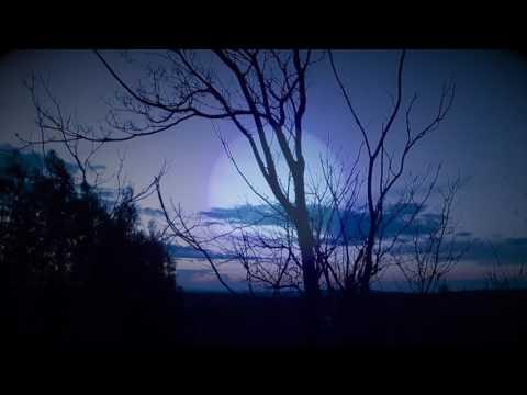 Nocturnal Emissions - IX