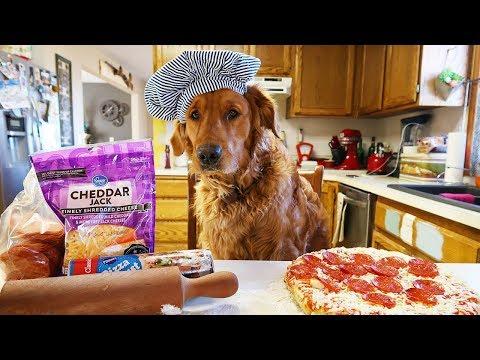 Funny Chef Dog