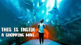 WORLD'S LARGEST MALL - Exploring Dubai with Locals