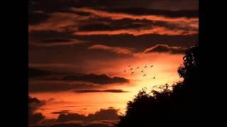 Jamie Winchester & Hrutka Róbert - It