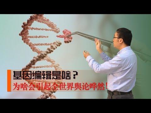 基因编辑是啥?CRISPR/cas9技术如何修改DNA?李永乐老师讲基因工程(1)