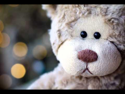 Homeless Teddy Bears