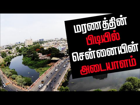 The Sad State of Cooum River | Lankasri Documentary