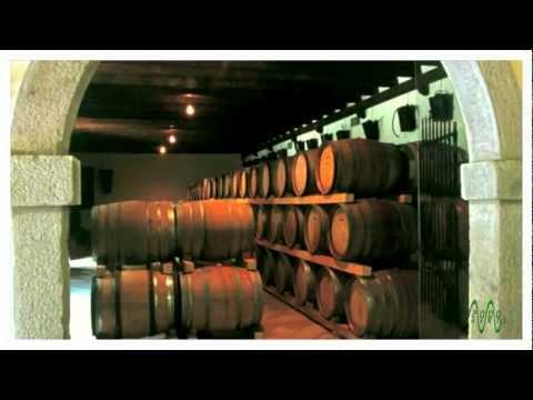 TERRITORIO DI ... VINO: NORDEST ITALIANO - COLLIO FRIULANO E SLOVENO (1) from YouTube · Duration:  13 minutes 57 seconds