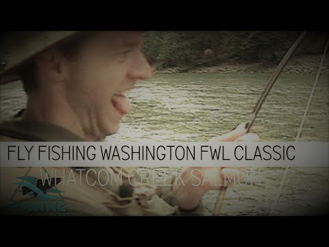 Fly Fishing Washington State FWL Classics Whatcom Creek Bellingham Salmon