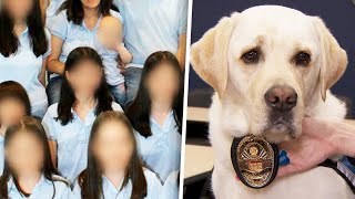 Meet Comfort Dog Helping Turpin Kids Cope