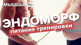 Как похудеть и набрать мышц эндоморфу?