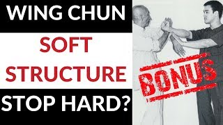 """Wing Chun - Can """"Soft"""" Structure Really Stop Hard & Powerful Attacks screenshot 5"""