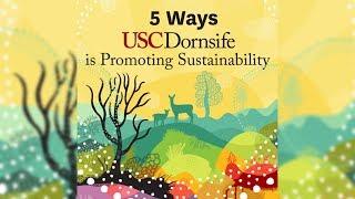 5 Ways We're Promoting Sustainability