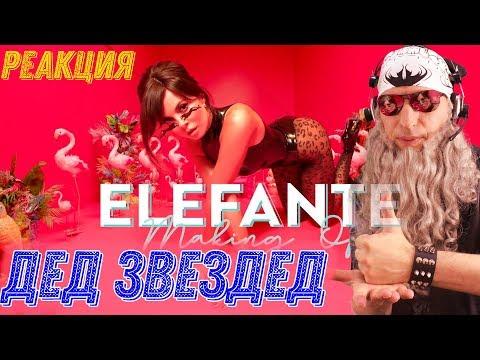NK - ELEFANTE (Official Video) РЕАКЦИЯ | РЕАКЦИЯ на NK ELEFANTE