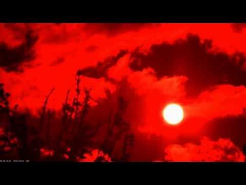Electric Orange -