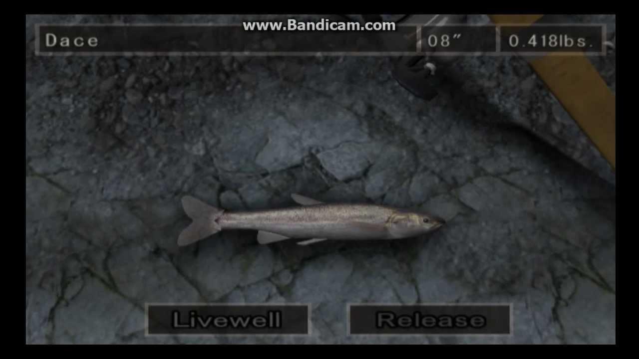 River Monsters Part 2 - Reel Fishing III Part 1