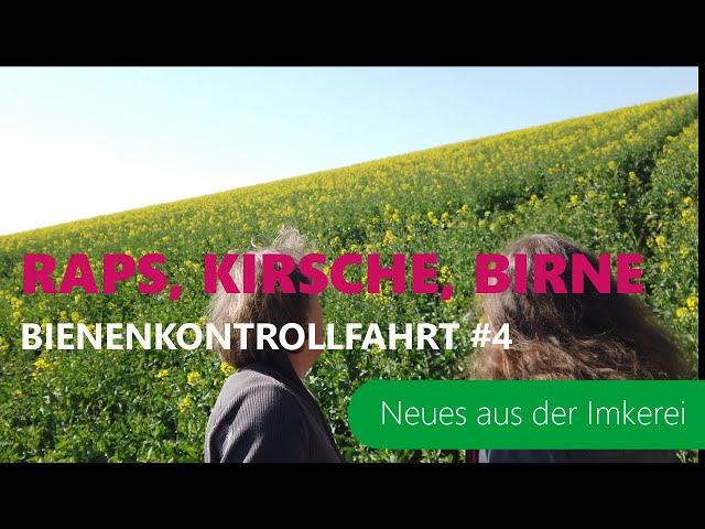 BKF #4-2021 Warmer April | Rapsblüte, Obstblüte | Schurwald, Schwäbische Alb | Neues aus der Imkerei