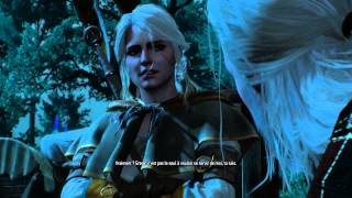 [Serie FR] The Witcher 3 : wild hunt (21) à travers le temps et l