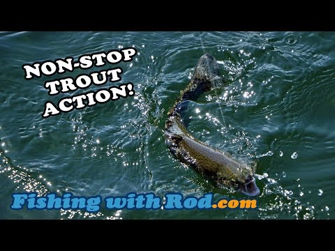 NON-STOP TROUT ACTION! - Float Fishing At Hicks Lake BC Canada | Fishing With Rod