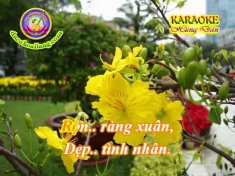 Karaoke - LK Mung Xuan & Vui Chuc Xuan - HD.avi