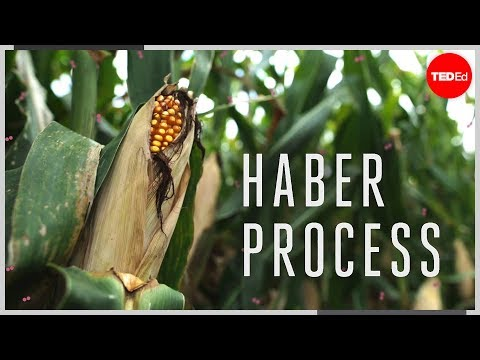 Video image: The Haber process