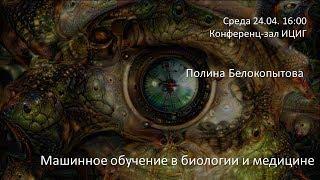 """Полина Белокопытова """"Машинное обучение в биологии и медицине"""""""