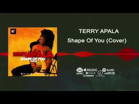 Terry Apala - Shape Of You Cover [Official Audio]
