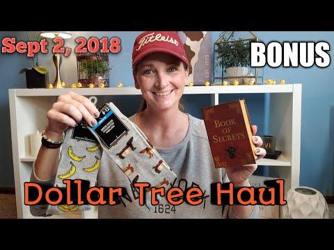 Dollar Tree Haul* New Items* BONUS Dog & Cat Footage*Sept 2