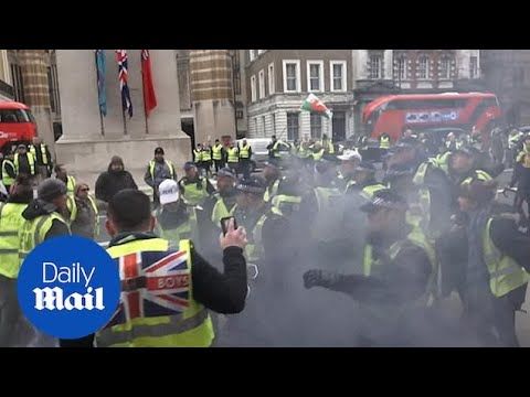 Police clash with 'yellow vest' protesters in central London