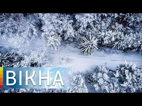 Вікна-новини: Гололедица и туман: когда закончится непогода в Украине | Вікна-Новини