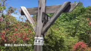 横根山 2016年6月1日