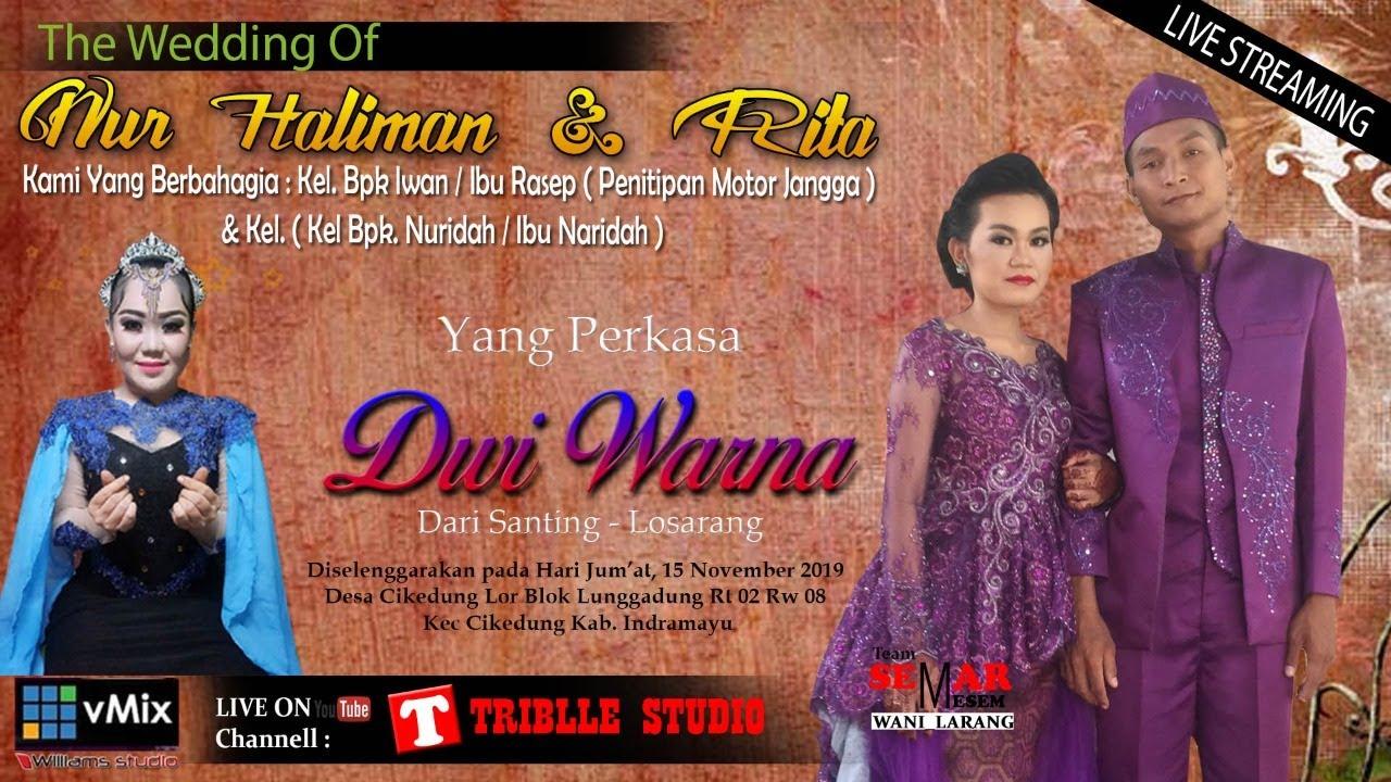 Download Live Streaming Yang Perkasa Sandiwara DWI WARNA // Jum'at, 15 Nov 2019 // Siang