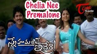 Snehamante Idera Songs - Chelia Nee Premalone - Nagarjuna - Bhoomika