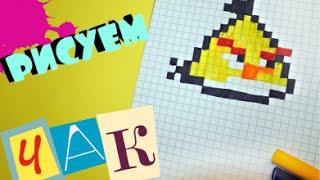 Рисуем по клеточкам - ЧАКА И ANGRY BIRDS!(Учимся рисовать ЧАКА И ANGRY BIRDS! группа в VK : http://vk.com/pchpixel., 2016-09-04T17:00:57.000Z)
