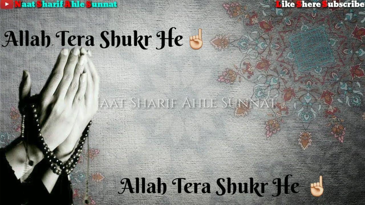 New whatsapp status ALLAH TERA SHUKR HAI - Hafiz ahmed raza