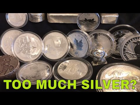How Do You Know When You Have TOO MUCH Silver?
