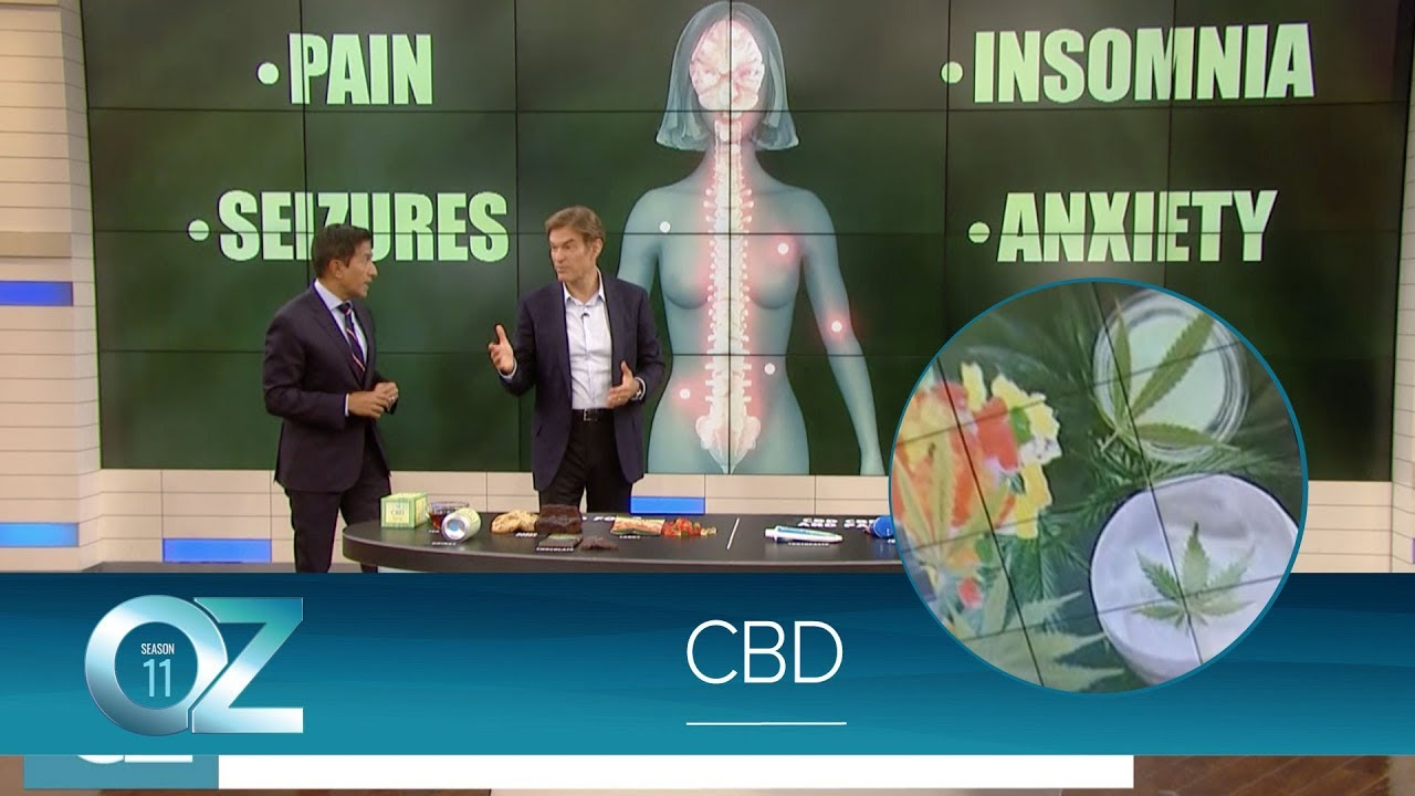 What You Need to Know About CBD