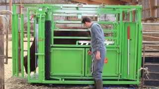 Cage de contention et pesage PM 2800 Maréchalle