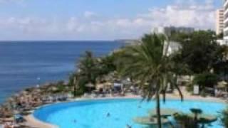Sol Calas de Mallorca Resort - Balmoral, Chihuahuas, Mastines in Calas