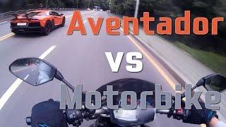 람보르기니 아벤타도르 Aventador vs Motorbike - 일상 12