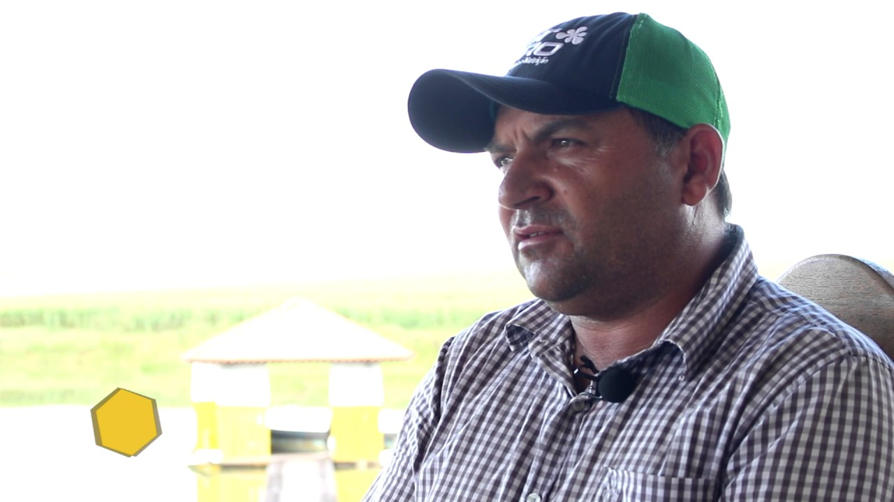 Depoimento José Edilson de Andrade (Paraíba), Fazenda Arapongas, Nova Canaã do Norte - MT