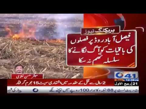 کسان حکومت پنجاب کی جانب سے عائد پابندی ہوا میں اڑا نے لگے