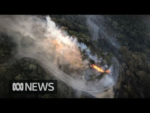 A 21-year-old man has died in the Queensland bush fires | ABC News