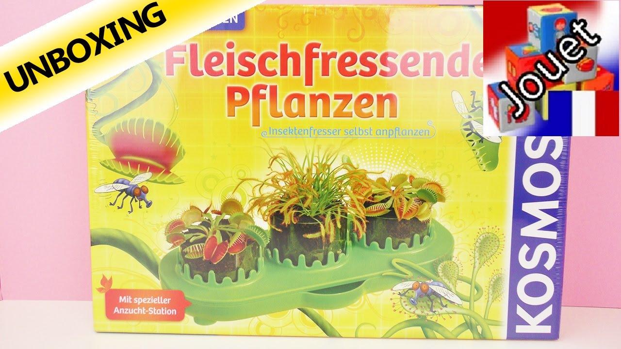 plantes carnivores kosmos bo te d 39 exp riences faire pousser des plantes qui mangent les. Black Bedroom Furniture Sets. Home Design Ideas