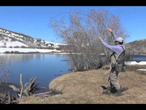 Fly Fishing Steamboat's Yampa River with Jed Collins