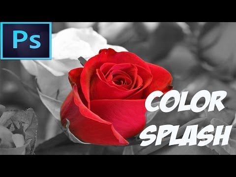 Adobe Photoshop CC Tutorial - Color Splash Effect (For Beginners)