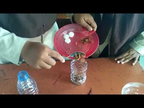 TTG : Alat Penangkap Nyamuk dari Pramuka MAN 1 Kota Madiun
