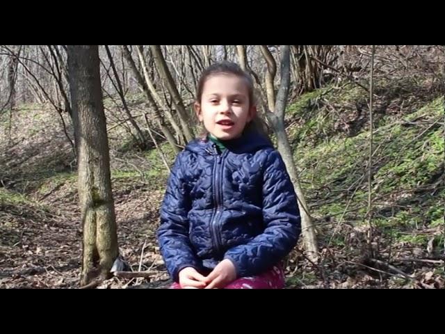 Изображение предпросмотра прочтения – СофияИндыченко читает произведение «Весна» А.Н.Плещеева