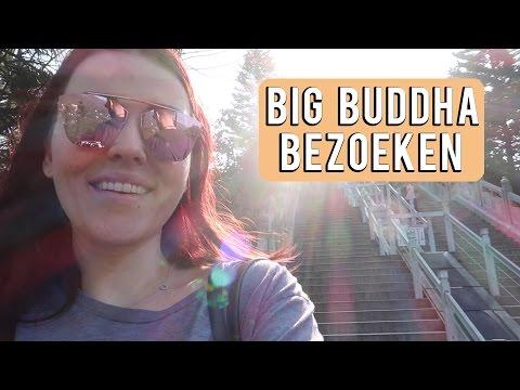 Big Buddha in Ngong Ping bezoeken | Vloggloss 802