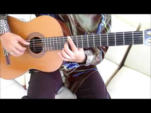 Lost Frequencies Are You With Me Guitar Lesson - Guitar Lessons for Beginners