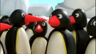 Pingu & Friends IT