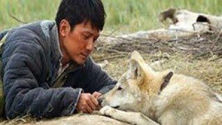 הזאב האחרון (2015) Wolf Totem