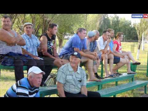Чемпианат Самарской области по футболу. Кошки - Приволжье